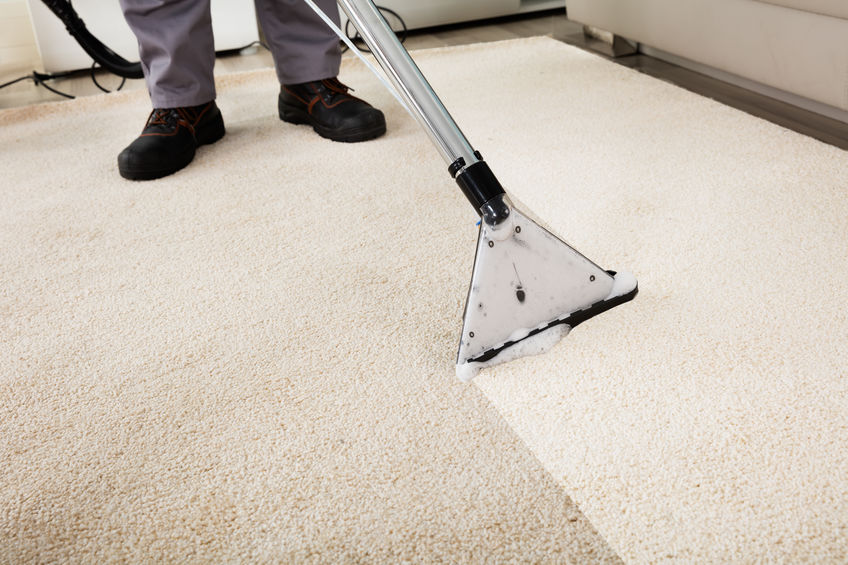 szőnyeg- és kárpittisztító gépek